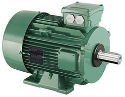 Whitfield Pellet Stove 1 RPM Auger Motor 12046300